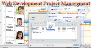 Web Development Project Management